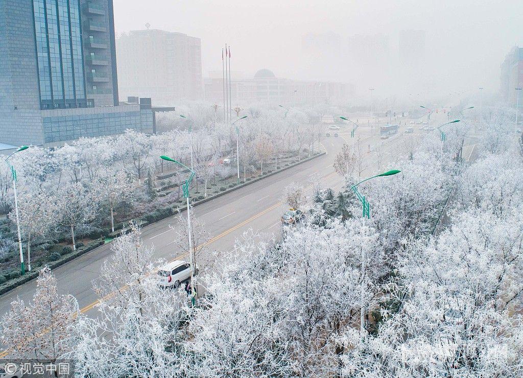 山西运城现雾凇美景 城市变身冰雪梦幻王国