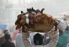 孟加拉人头顶重物出行