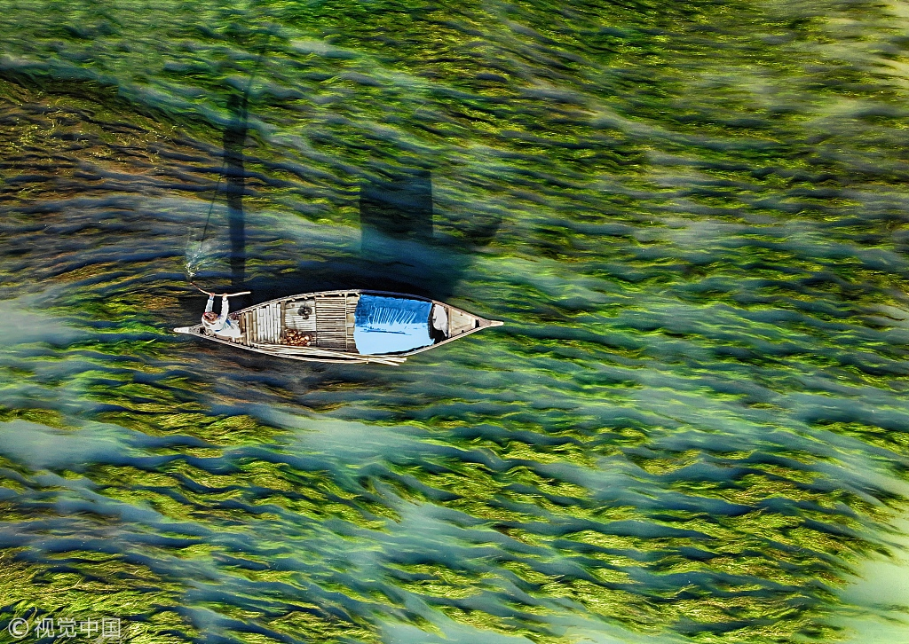 孟加拉国河流清澈见底 渔船畅行水藻间构成美丽图画
