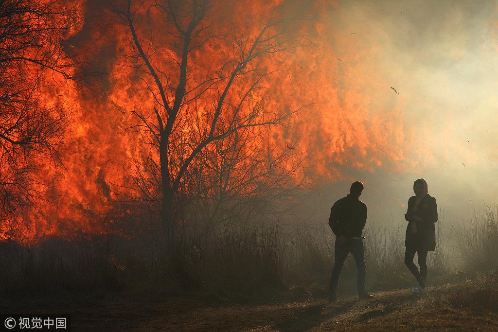 克里米亚地区发生山火 火光冲天