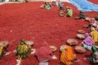孟加拉国农民晾晒红辣椒