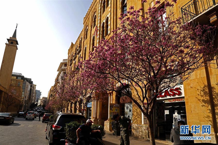 春到贝鲁特