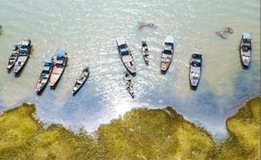 鄱阳湖开始禁渔