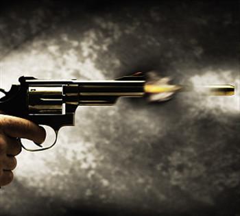 新西兰恐袭后 德媒:严控枪支需成国际规则
