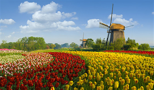 全世界最幸福国家排名出炉 荷兰首次进入前五