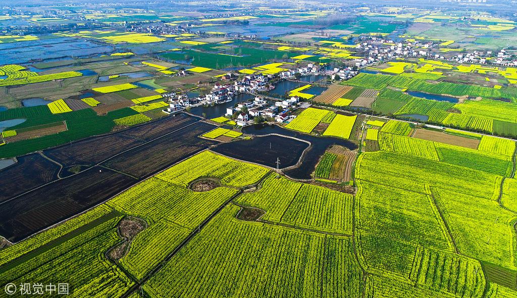 安徽铜陵:航拍春日乡村田野