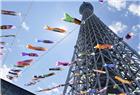 日本东京晴空塔周围挂起鲤鱼旗