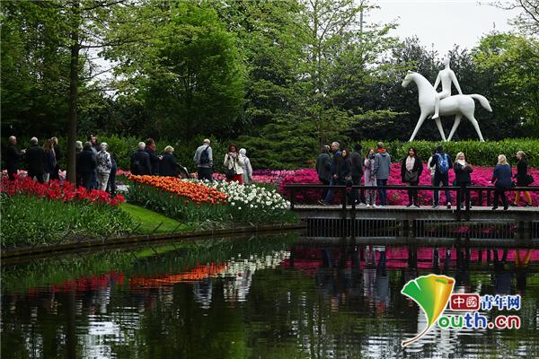 荷兰库肯霍夫公园花展举行 游客畅游绚丽花海