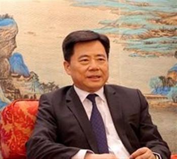中国驻德国大使: