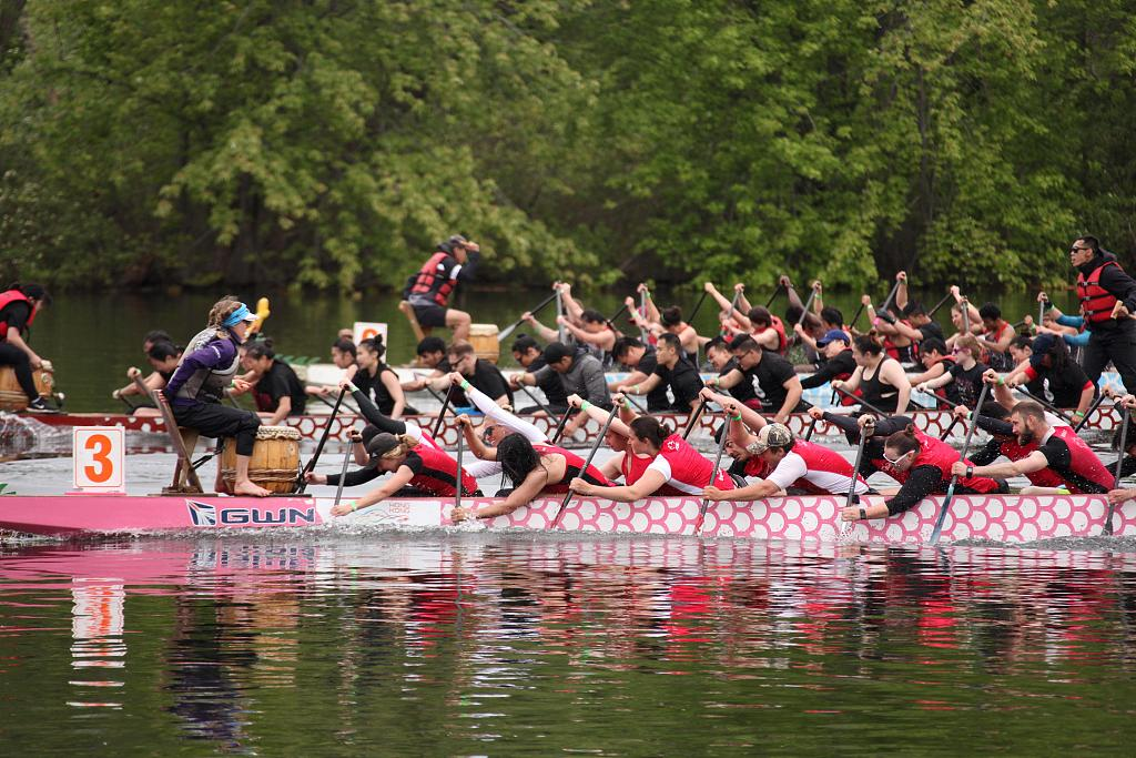 多伦多国际龙舟节落幕 参赛规模创新高