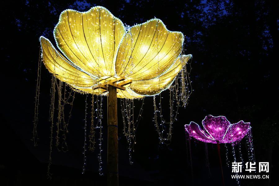 自贡彩灯闪耀罗马尼亚锡比乌国际戏剧节