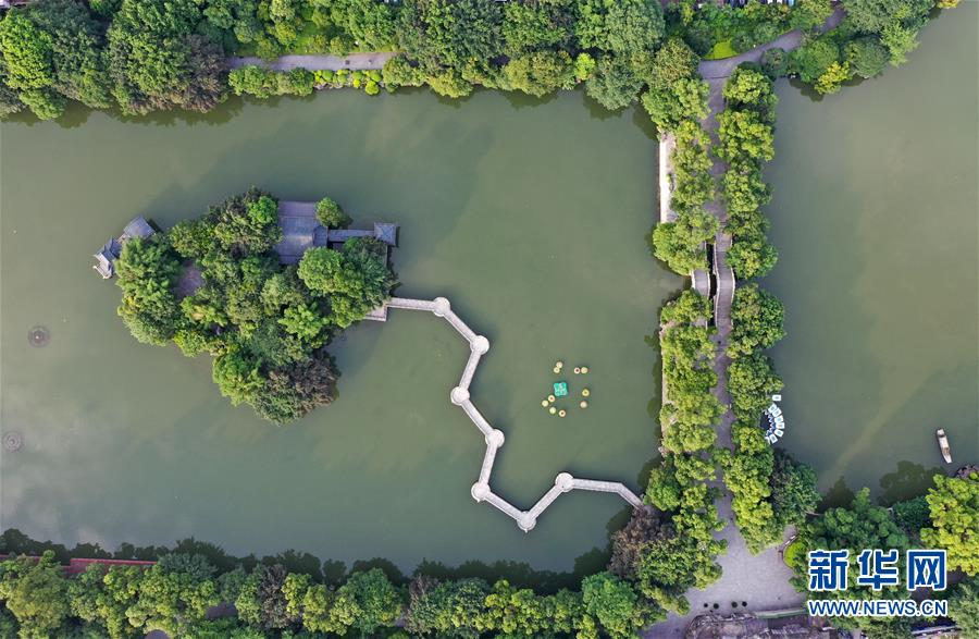 广西桂林:榕湖杉湖绿树成荫,湖光夏日美