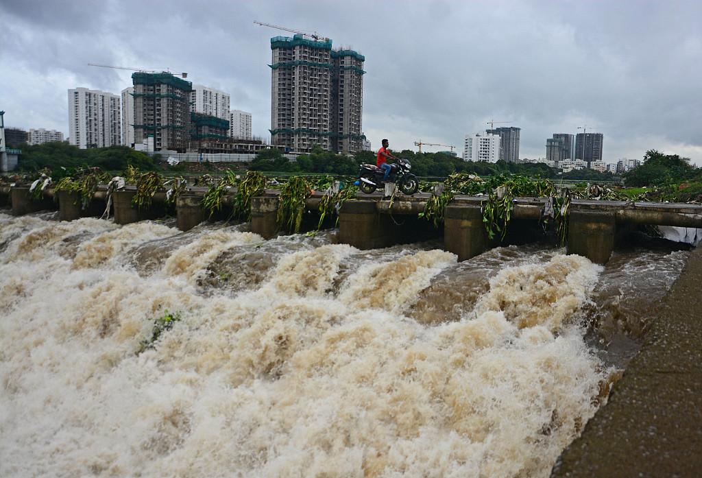 印度遭遇强降雨 大树倒下压垮汽车