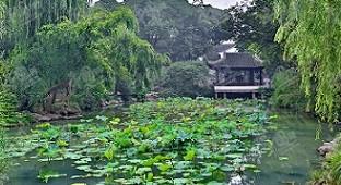 苏州古典园林:精雕细琢 咫尺之内造乾坤