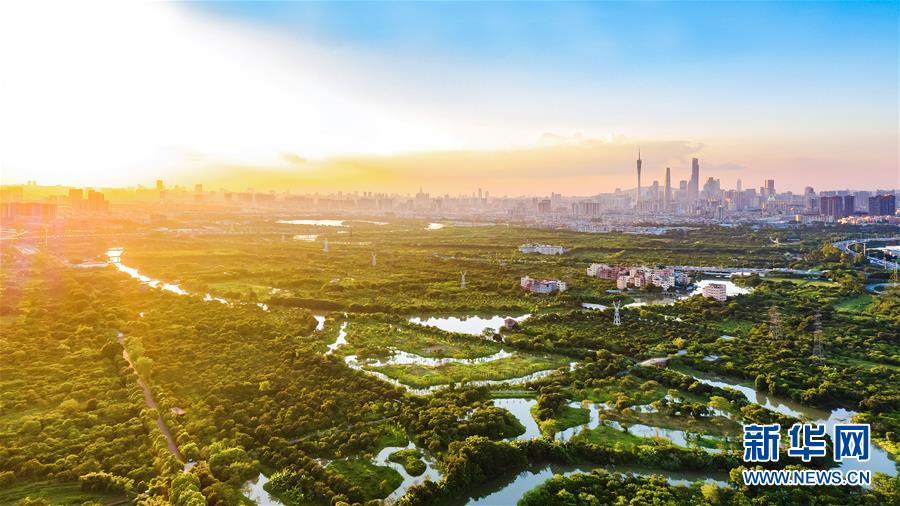世园会迎广东日:生态中国·城中湿地谱粤章
