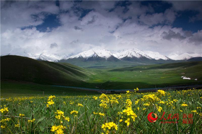 新疆托乎拉苏草原:草原霞光美 岁月此静好