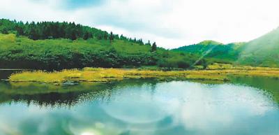 重庆武隆白马山:山高水长 植被覆盖率高