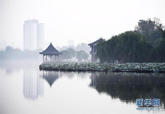 """山东济南:大明湖晨雾缭绕绘""""水墨花卷"""""""