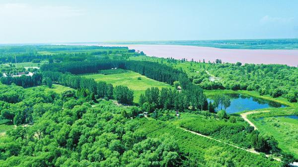 綠水青山守護黃河生態