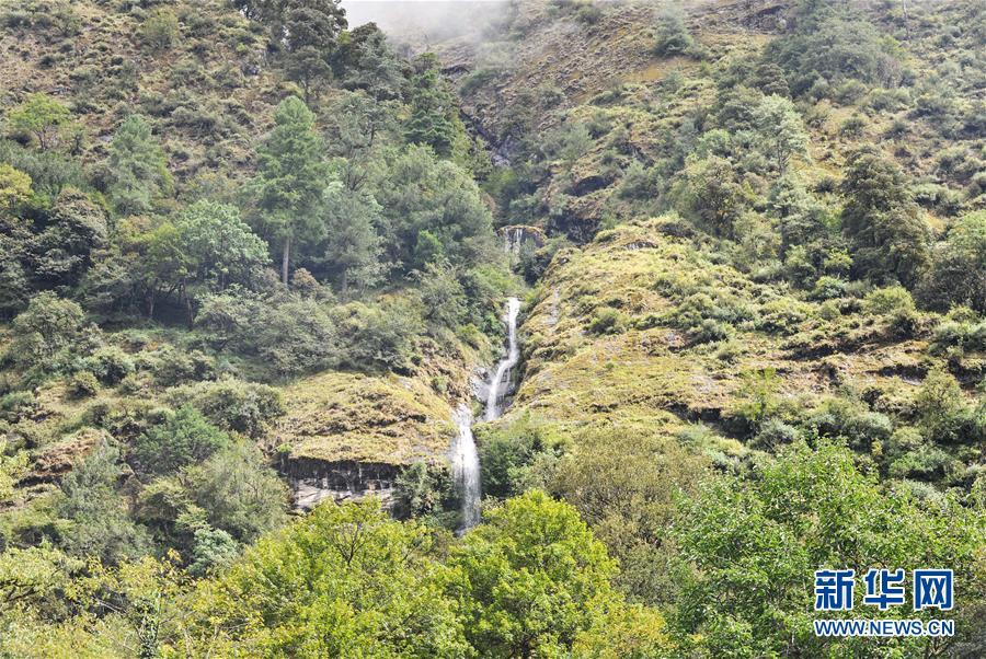 西藏山南市错那县:山水秘境勒布沟美如画