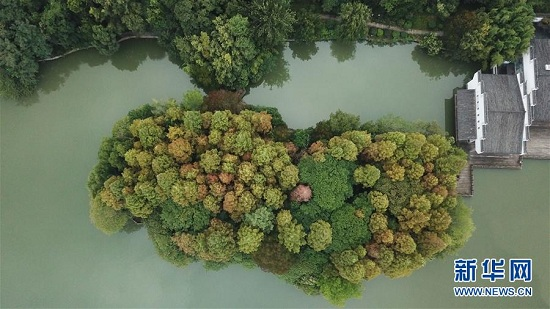 安徽合肥市:环城公园风景宜人,美如画卷