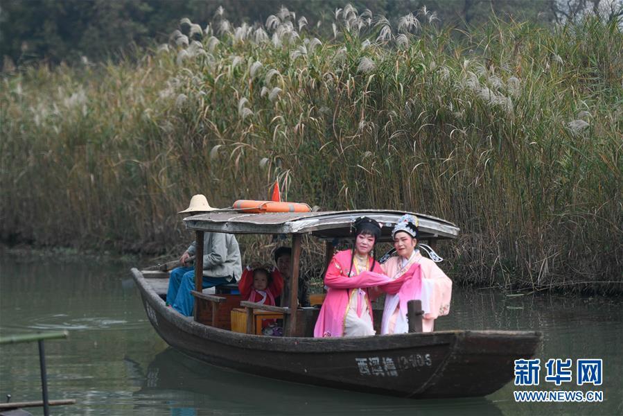 浙江杭州市西溪湿地国家公园进入赏芦佳季