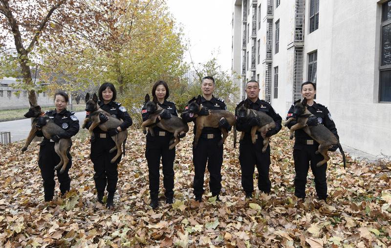 北京:首批警用克隆犬正式入警