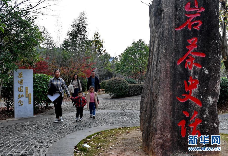 武夷山大红袍体验中心开园