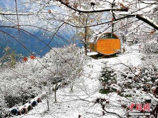 四川什邡山区迎来今冬首场雪 美景宛如童话世界