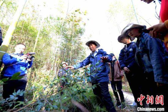 科考专家介绍保护区内的植物。 王东明 摄