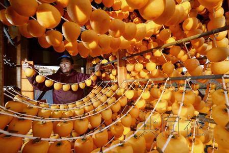 日本福岛县柿饼将出货均经放射性物质检查(图)