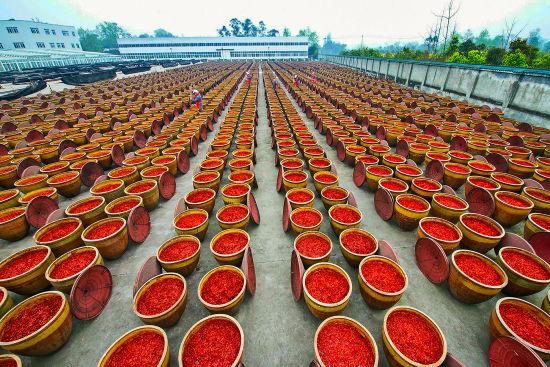 川菜产业园。