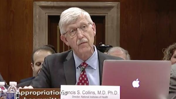 美国国立卫生研究院(NIH)院长弗朗西斯·柯林斯(Francis Collins)在参加美国国会参议院听证会
