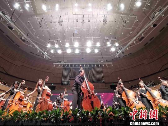 杨振安与学生用70把低音提琴一同奏响《我和我的祖国》。 付敬懿 摄