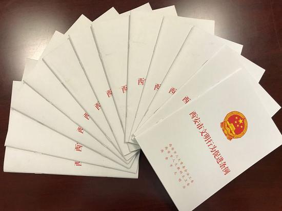 西安市举行《西安市文明行为促进条例》颁布实施一周年座谈会