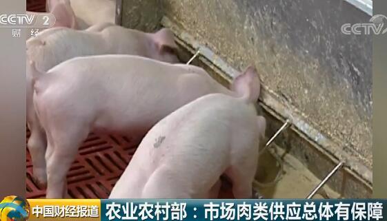 落实补贴政策、支持生猪补栏增养 市场肉类供应总体有保障