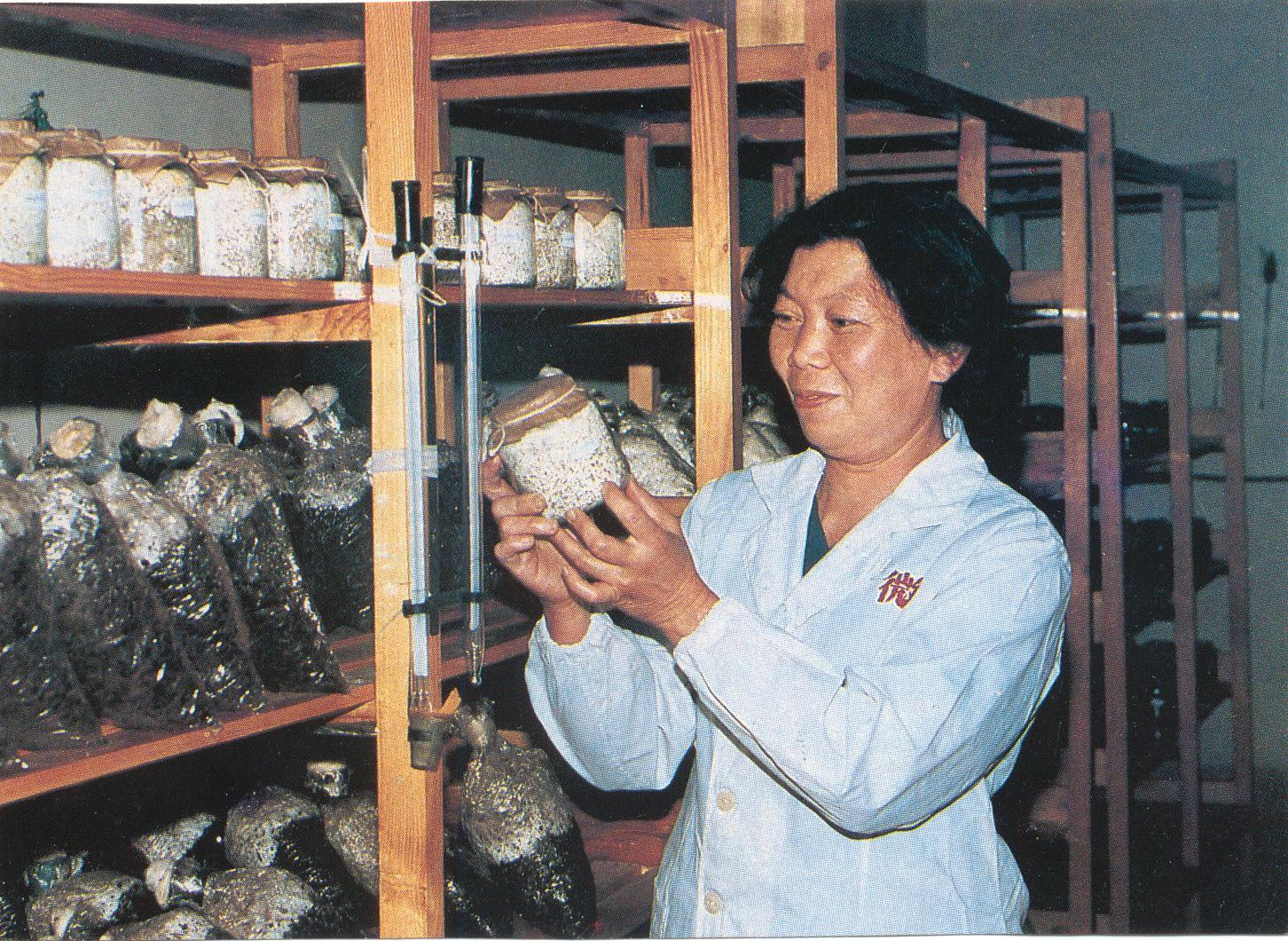 杨珊珊同志在科研工作中.JPG