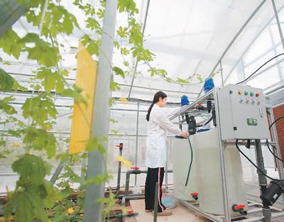 数字科技开启农业新未来(网上中国)