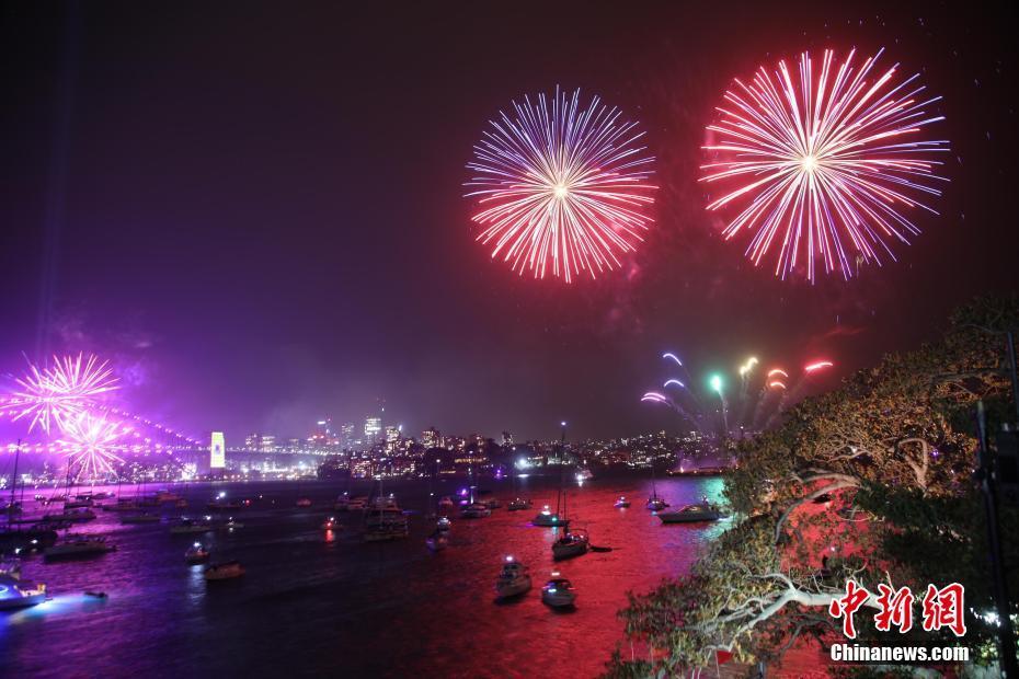 悉尼10万支烟花迎接新年