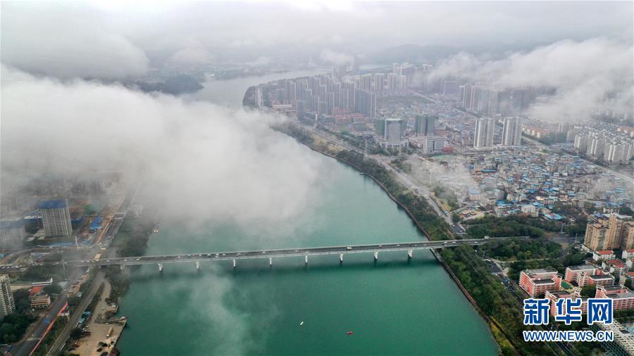 广西柳州:雨后柳江两岸云雾升腾宛如画卷