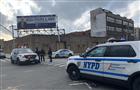 纽约袭警事件致警察受伤