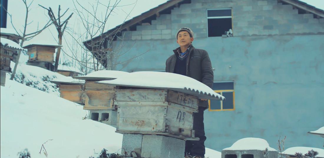 探访神农架养蜂人的致富路