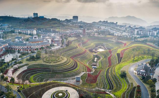 毕节市大方县:安置区里春色美