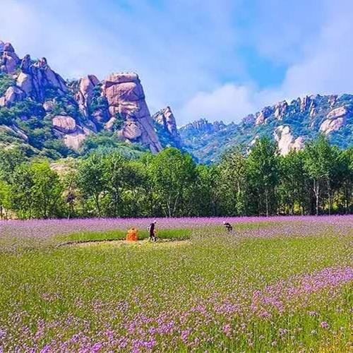 河南省驻马店市五一假期共接待游客78.22万人次