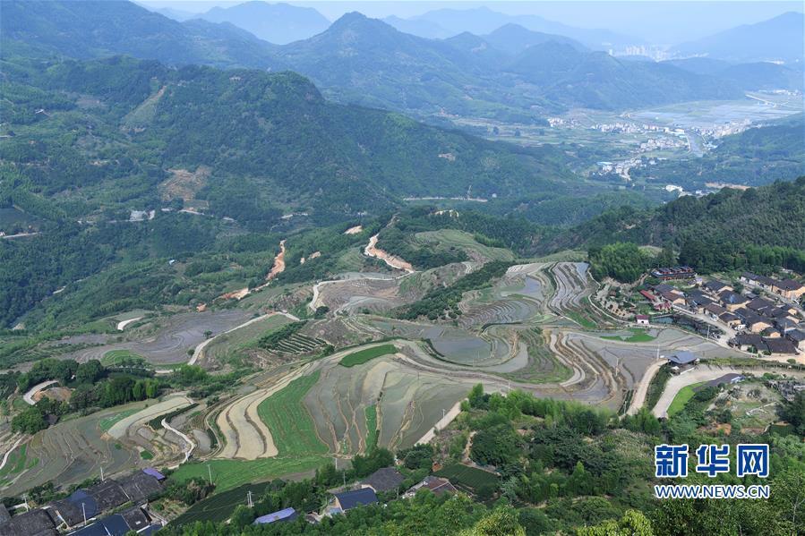 (环境)(2)福建政和:保护农业生态资源 展现梯田独特景观