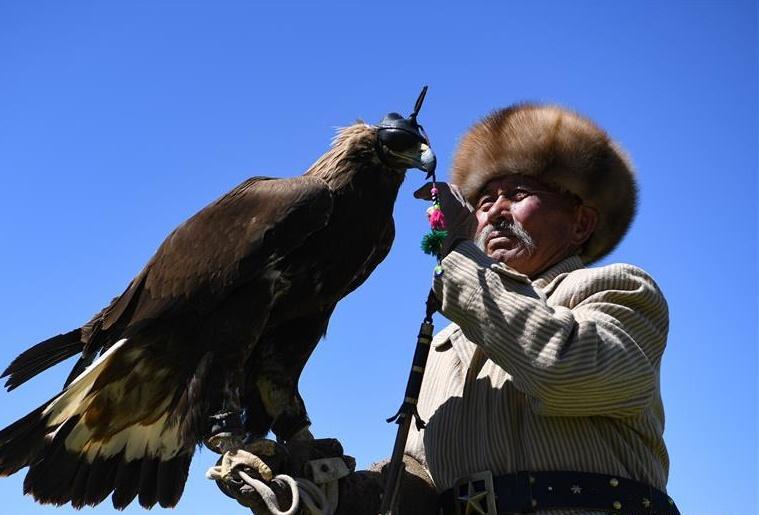 """远山的""""鹰语者"""""""