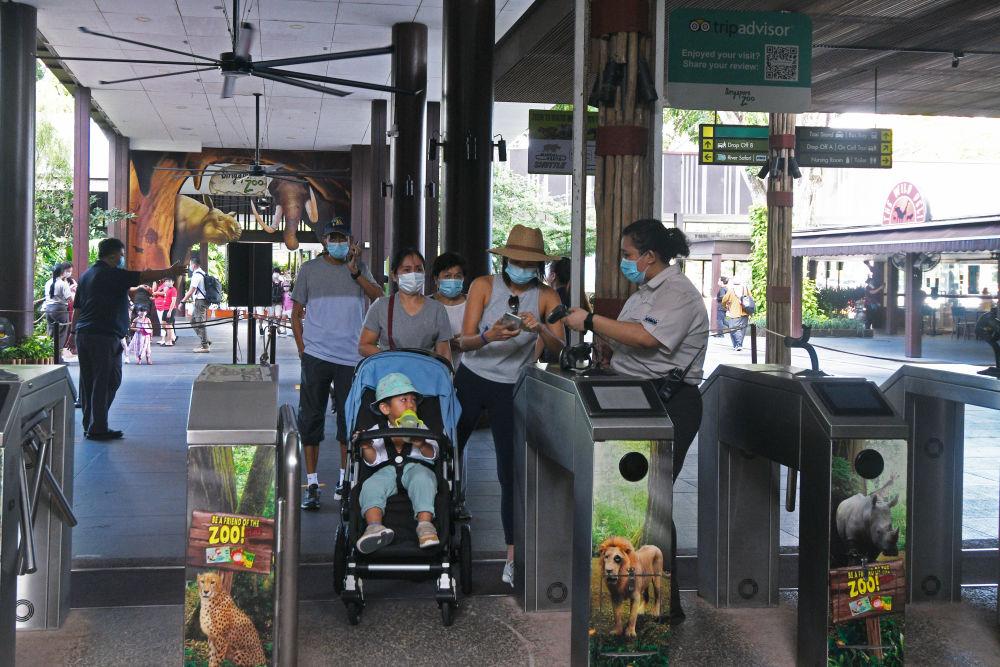 新加坡动物园向公众重新开放