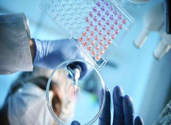 澳门高校研发智能系统快速区分新冠与普通肺炎