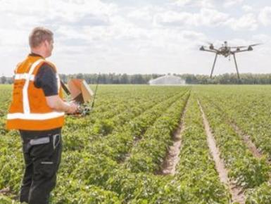 荷兰农场用高新技术实现精准生产