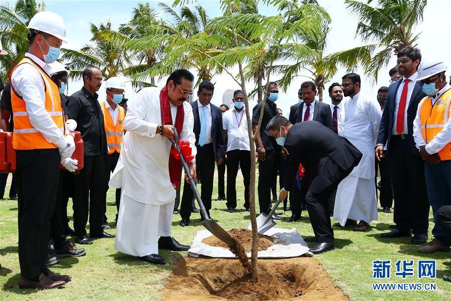 斯里兰卡总理点赞科伦坡港口城建设